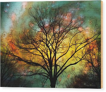 Golden Sunset Treescape Wood Print by Barbara Chichester