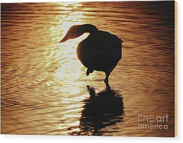 Wood Print featuring the photograph Golden Swan by Tatsuya Atarashi