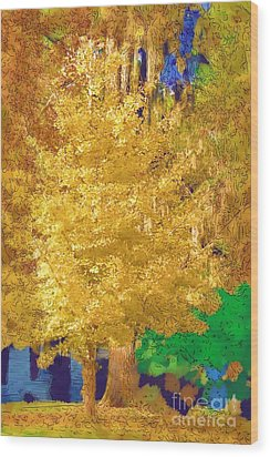 Wood Print featuring the photograph Golden Tree by Donna Bentley