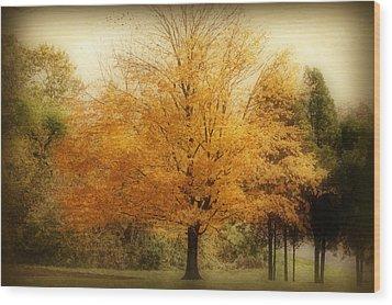 Golden Tree Wood Print by Sandy Keeton