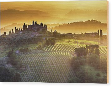 Golden Tuscany Wood Print by Evgeni Dinev