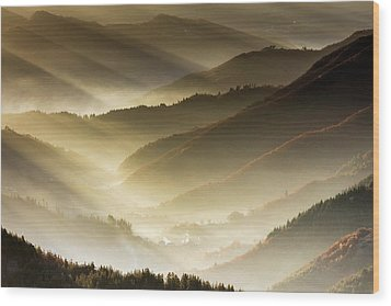 Golden Valley Wood Print by Evgeni Dinev