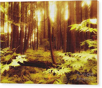 Golden Woods Wood Print by Kim Prowse