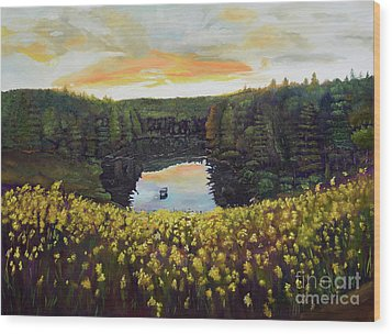 Wood Print featuring the painting Goldenrods On Davenport Lake-ellijay, Ga  by Jan Dappen