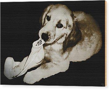 Golden's Best Friend Wood Print by Rora