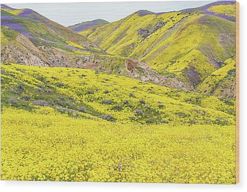 Wood Print featuring the photograph Goldfields And Temblor Hills by Marc Crumpler