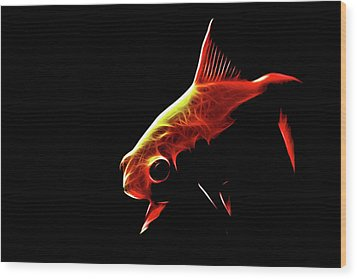 Goldfish 2 Wood Print by Tilly Williams