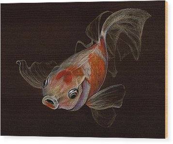 Wood Print featuring the drawing Goldfish by Heidi Kriel