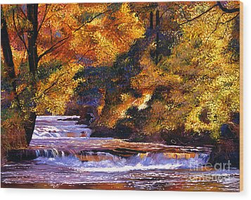 Goldstream River Wood Print by David Lloyd Glover