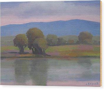 Goleta Estuary Wood Print by Jennifer Boswell