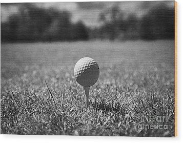 Golf Ball On The Tee Wood Print by Joe Fox