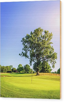 Wood Print featuring the photograph Golf Course by Alexey Stiop