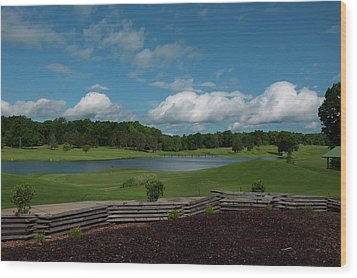 Golf Course The Back 9 Wood Print by Chris Flees