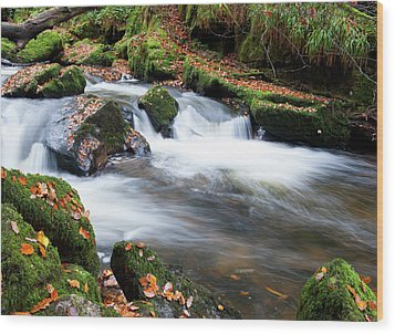Golitha Falls IIi Wood Print by Helen Northcott