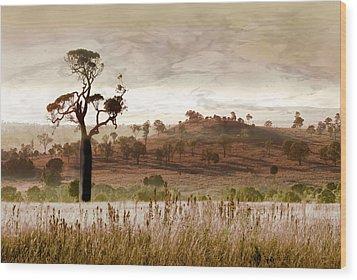 Gondwana Boab Wood Print