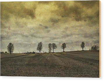 Wood Print featuring the photograph Gone Are Our Days Of Happiness.... by Russell Styles