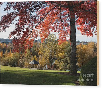 Gonzaga With Autumn Tree Canopy Wood Print by Carol Groenen