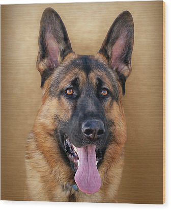 Good Boy Wood Print by Sandy Keeton