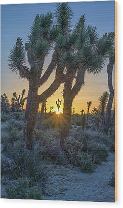 Good Morning From Joshua Tree Wood Print