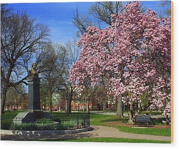 Goodale Park In The Spring Wood Print by Laurel Talabere