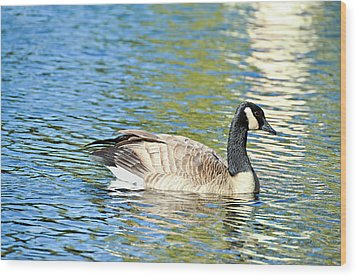 Wood Print featuring the photograph Goose And Sun Reflections by David Lawson