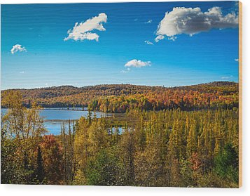 Goose Lake Wood Print