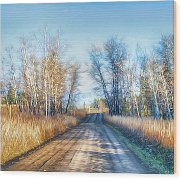 Wood Print featuring the photograph Goose Lake Road by Theresa Tahara