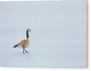 Wood Print featuring the photograph Goose Step by Nikolyn McDonald