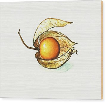 Wood Print featuring the painting Gooseberry by Heidi Kriel