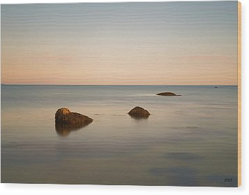 Wood Print featuring the photograph Gooseberry Island II Color by David Gordon