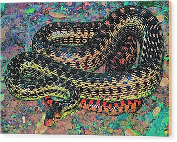 Wood Print featuring the photograph Gopher Snake by Pamela Cooper