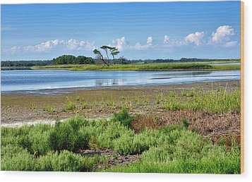 Wood Print featuring the photograph Gordons Pond At Cape Henlopen State Park - Delaware by Brendan Reals