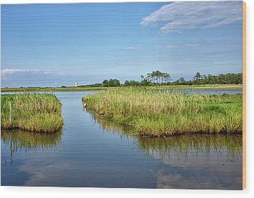 Wood Print featuring the photograph Gordons Pond - Cape Henlopen Park - Delaware by Brendan Reals