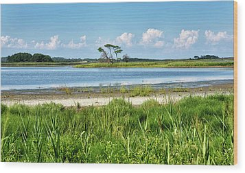 Wood Print featuring the photograph Gordons Pond - Cape Henlopen State Park - Delaware by Brendan Reals