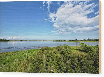 Wood Print featuring the photograph Gordons Pond Overlook - Cape Henlopen State Park - Delaware by Brendan Reals