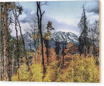 Gore Range Wood Print by Jim Hill