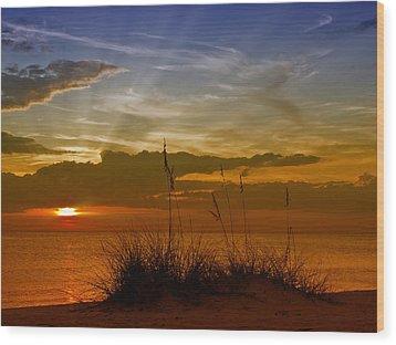 Gorgeous Sunset Wood Print by Melanie Viola