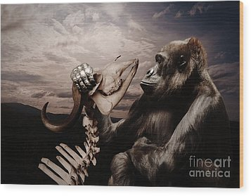 Wood Print featuring the photograph Gorilla And Bones by Christine Sponchia