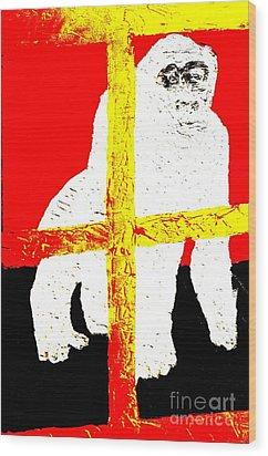 Gorilla Hogle Zoo 1 Wood Print by Richard W Linford