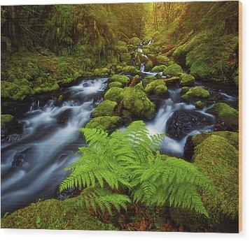 Wood Print featuring the photograph Gorton Creek Fern by Darren White