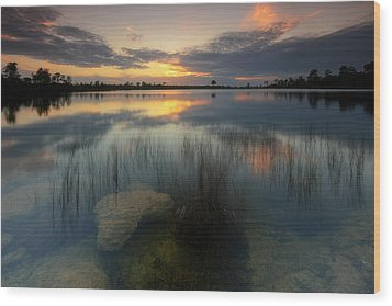 Wood Print featuring the photograph Gossamer Glades by Mike Lang