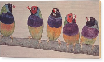 Gouldian Finches Wood Print