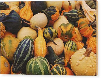 Gourds Wood Print by Jame Hayes