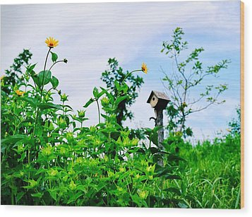 Governors Island Birdhouse Wood Print by Sandy Taylor