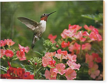 Graceful Garden Jewel Wood Print by Christina Rollo