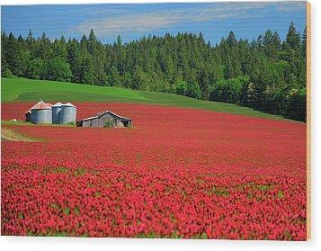 Grain Bins Barn Red Clover Wood Print by Jerry Sodorff