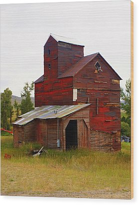 Grain Elevator Wood Print by Marty Koch