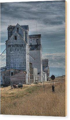 Grain Elevators, Wilsall Wood Print