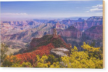 Grand Arizona Wood Print