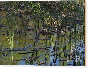 Grand Beach Marsh Wood Print by Joanne Smoley